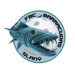 Logo Slaný